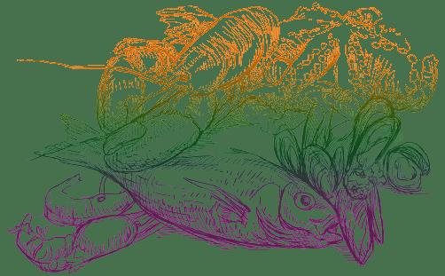 sea-cevicheria-alergi